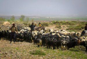 nomadas en iran