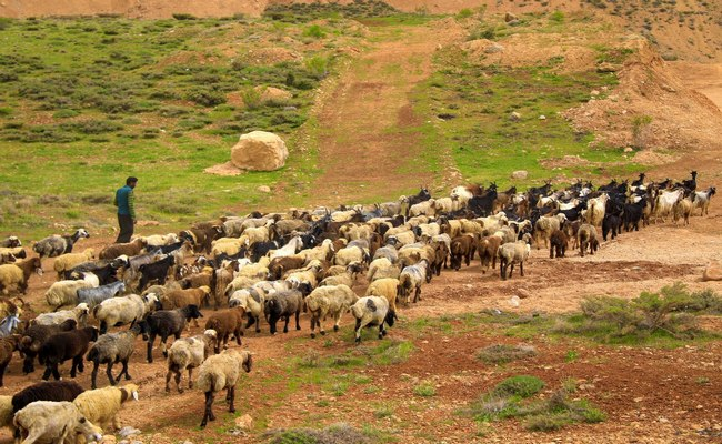 tribus nómadas en Irán